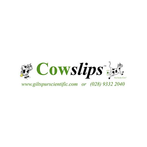 cowslips giltspur.jpg