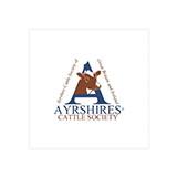 ayrshires.jpg