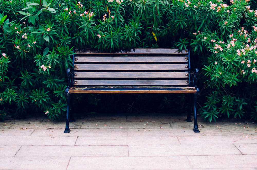 a-bench-in-the-park