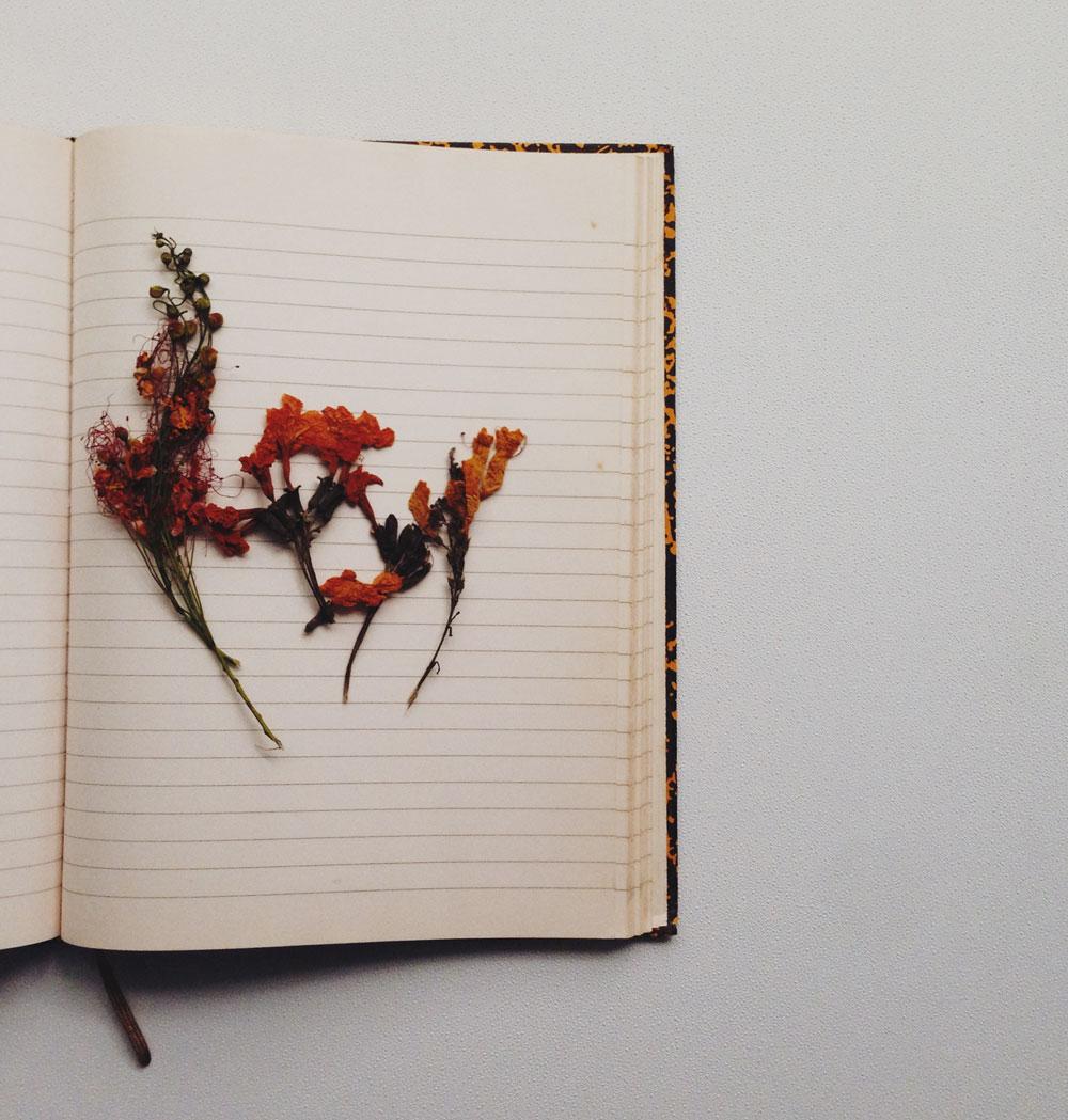 dried-flowers-inside-notebook