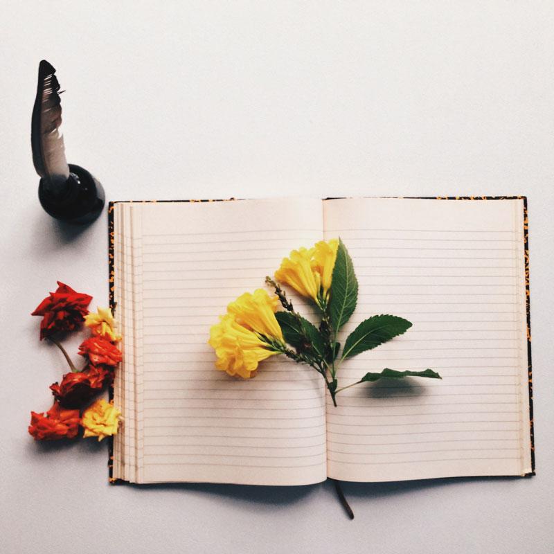 notebook-quill