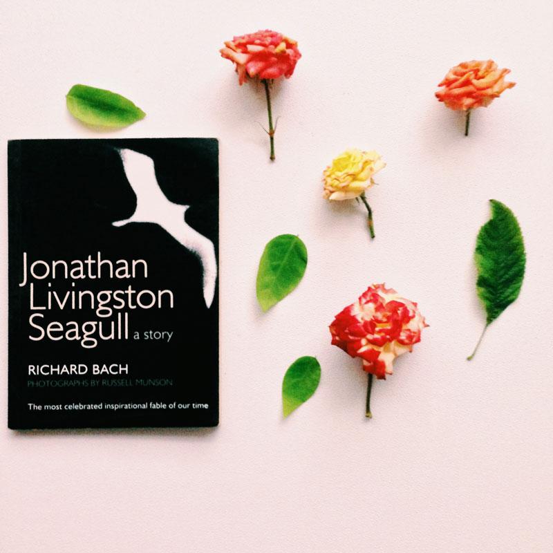 books-roses-minimal