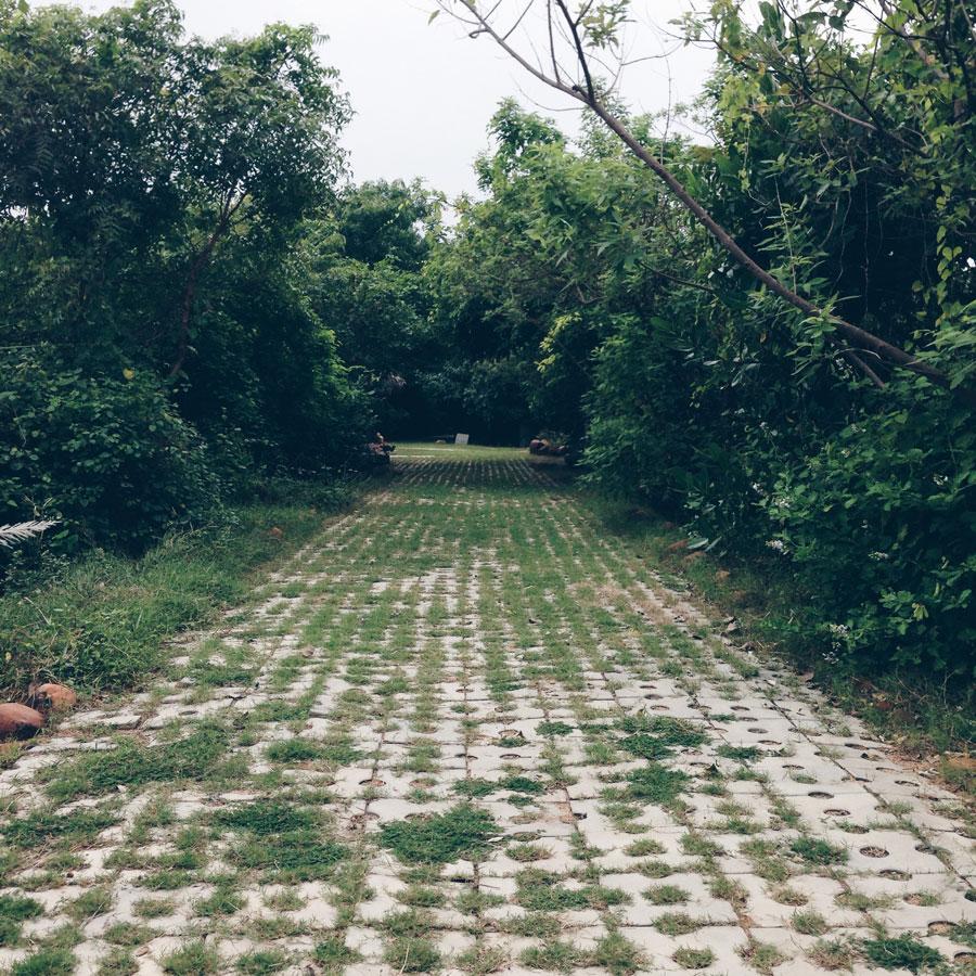 Tholkappia-Poonga-Adyar-Eco-Park-Chennai-visit