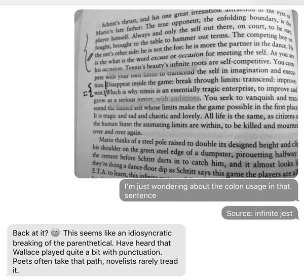 foster-wallace-conversations-punctuations.jpg