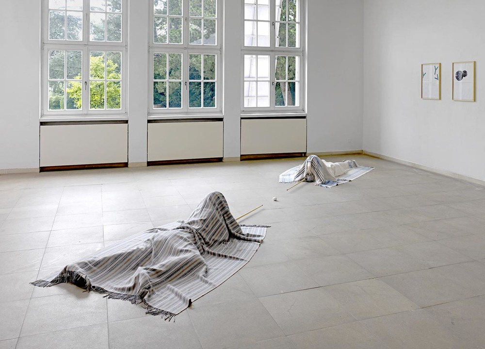 Installation Dialog, 2011