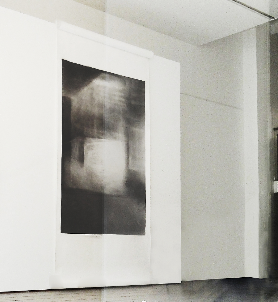 Untitled, 2014   Charcoal powder, graphite powder and black pigment on paper, 260 x 135 cm