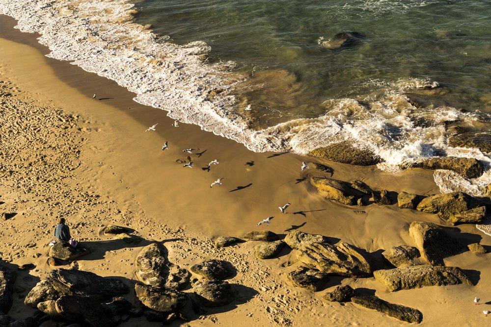 Lady, Beach, Birds