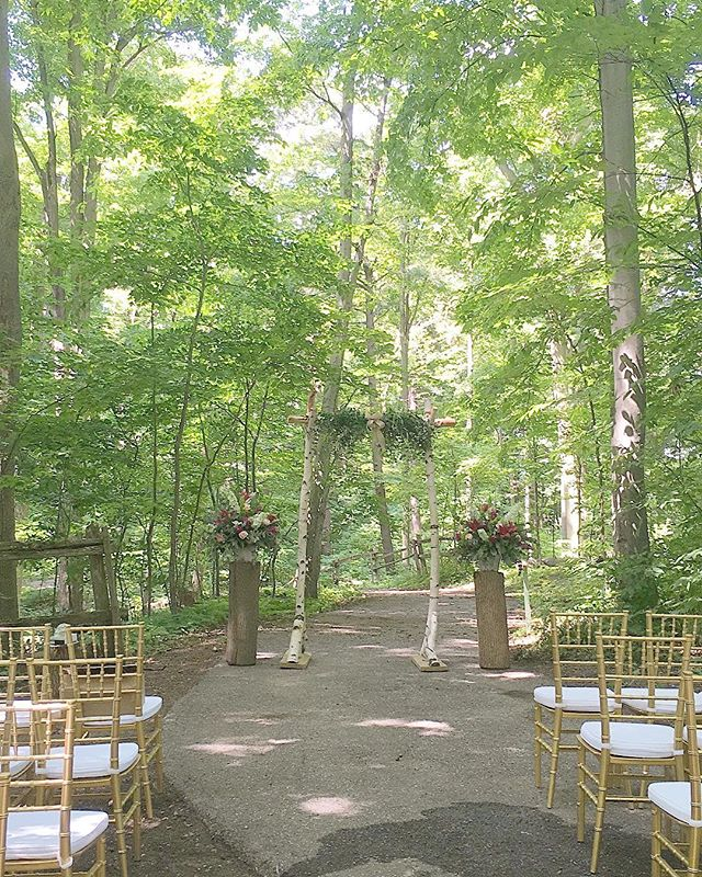The most charming ceremony in the forest at the incredible @kortrightcentre for Coleen & Mat's big day #matprophohsed