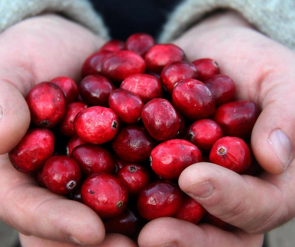 cranberry hands.png