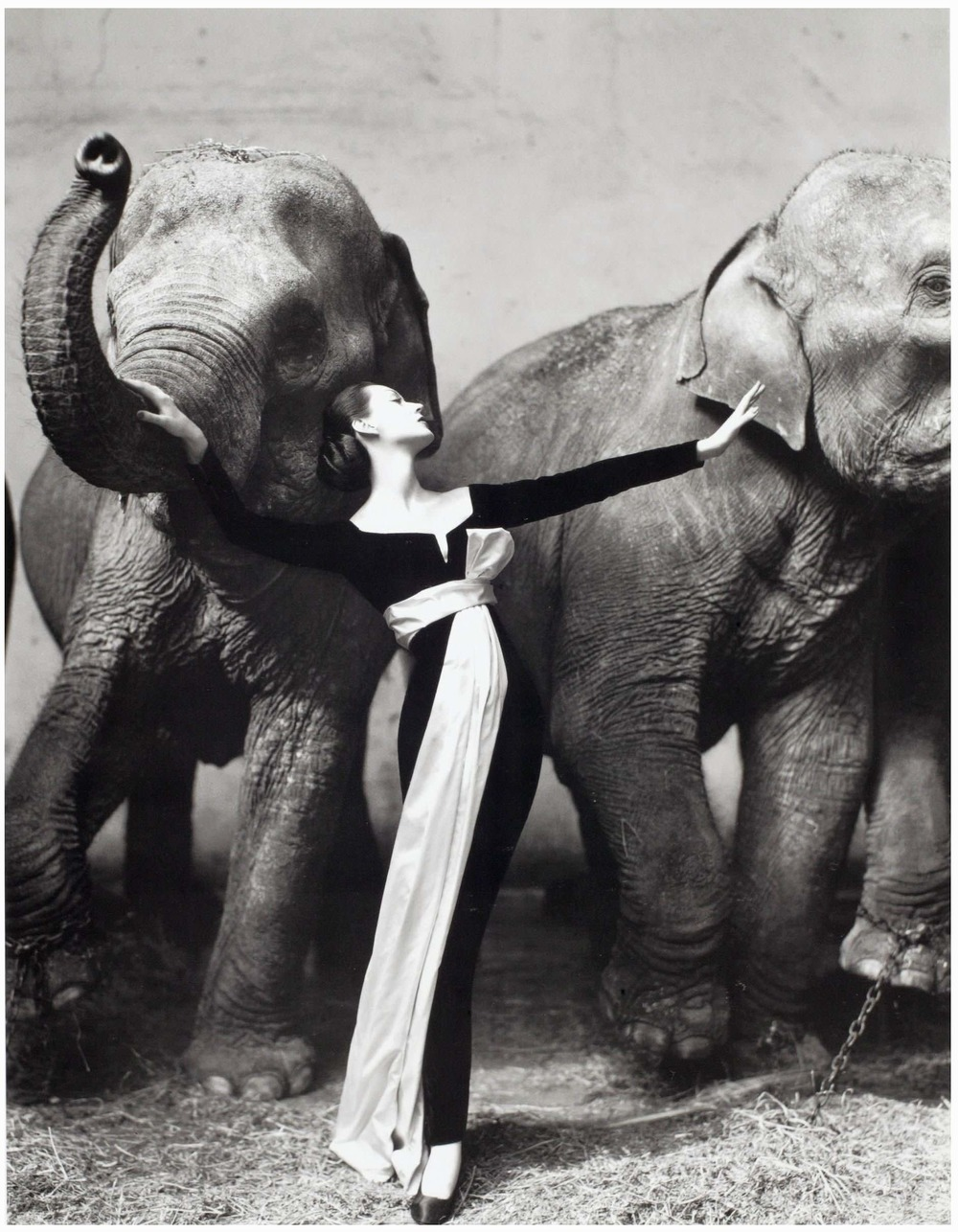 Yves Saint Laurent, Photo: Richard Avedon