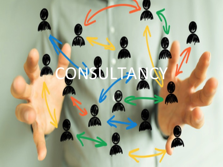 Our Consultancy Services