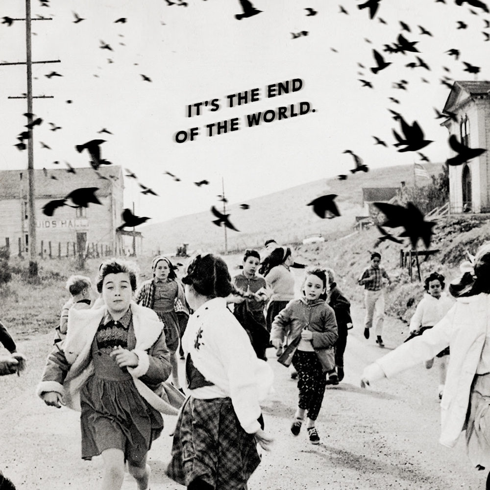 No. 018 / The Birds