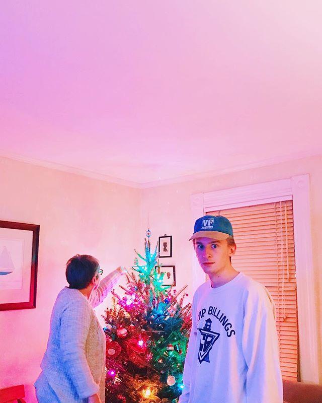 Hey neat a Christmas tree!