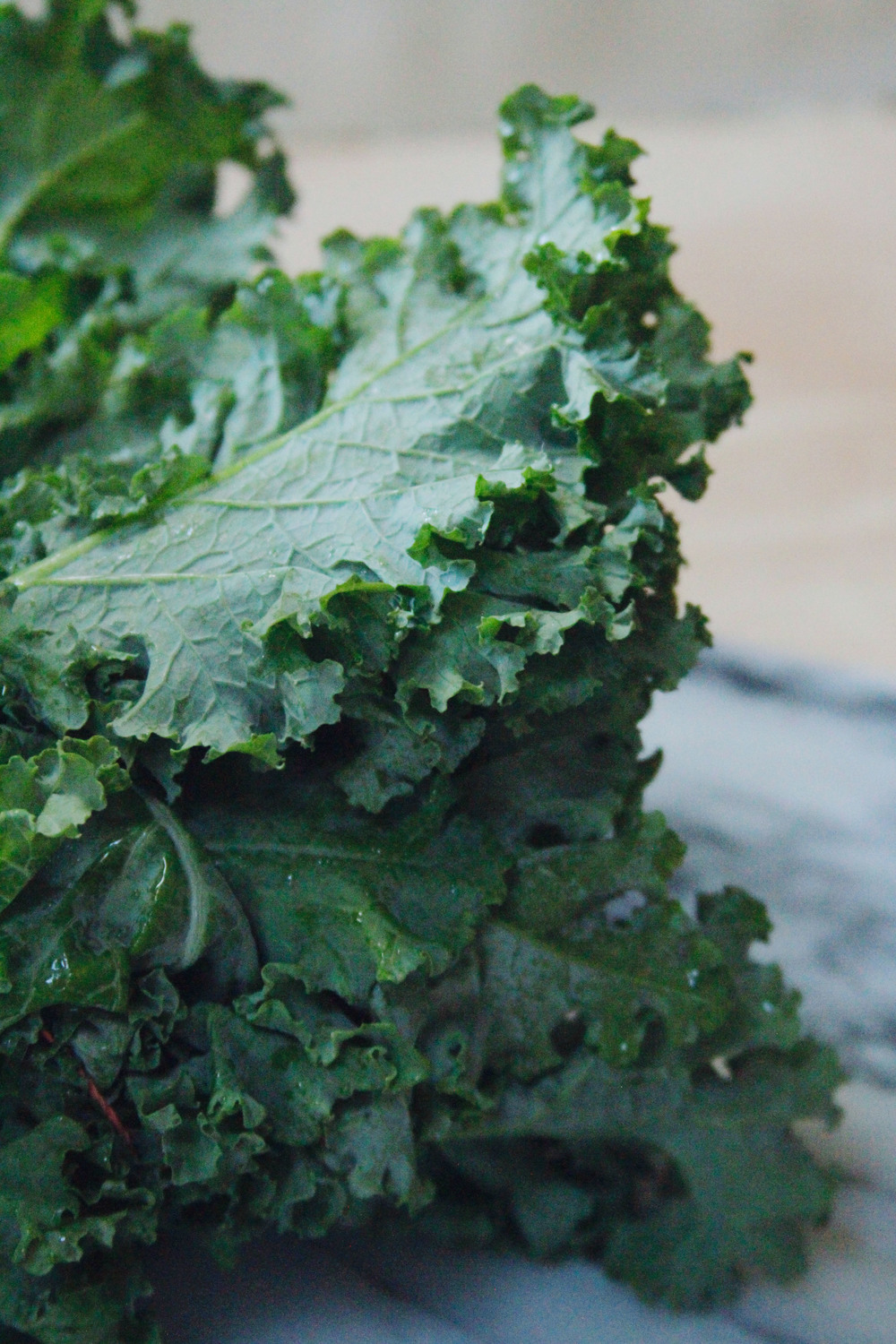Kale salad with fennel and hazelnuts
