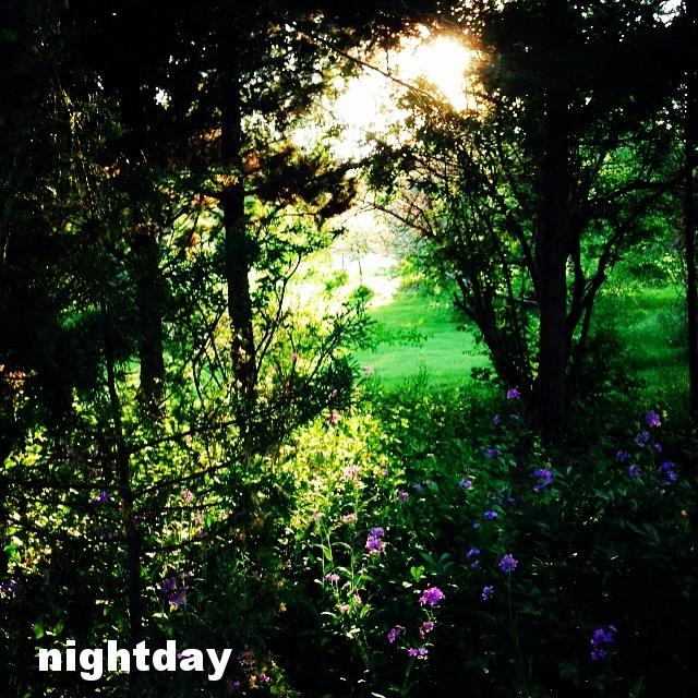 nightday