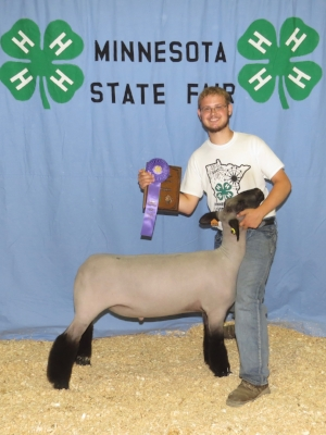 2017 Minnesota State Fair 4-H Livestock Show Grand Champion Market Lamb Brett Neel Alden Conger / Freeborn County