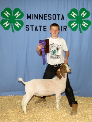2017 Minnesota State Fair 4-H Livestock Show    Grand Champion Market Meat Goat    Micah Thompson    New London-Spicer / Kandiyohi County