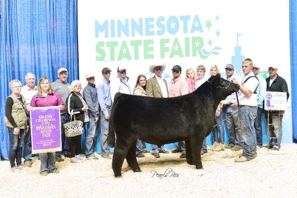 2017 Minnesota State Fair 4-H Livestock Show    Grand Champion Market Beef    Gavin Mulder    JCC / Jackson County