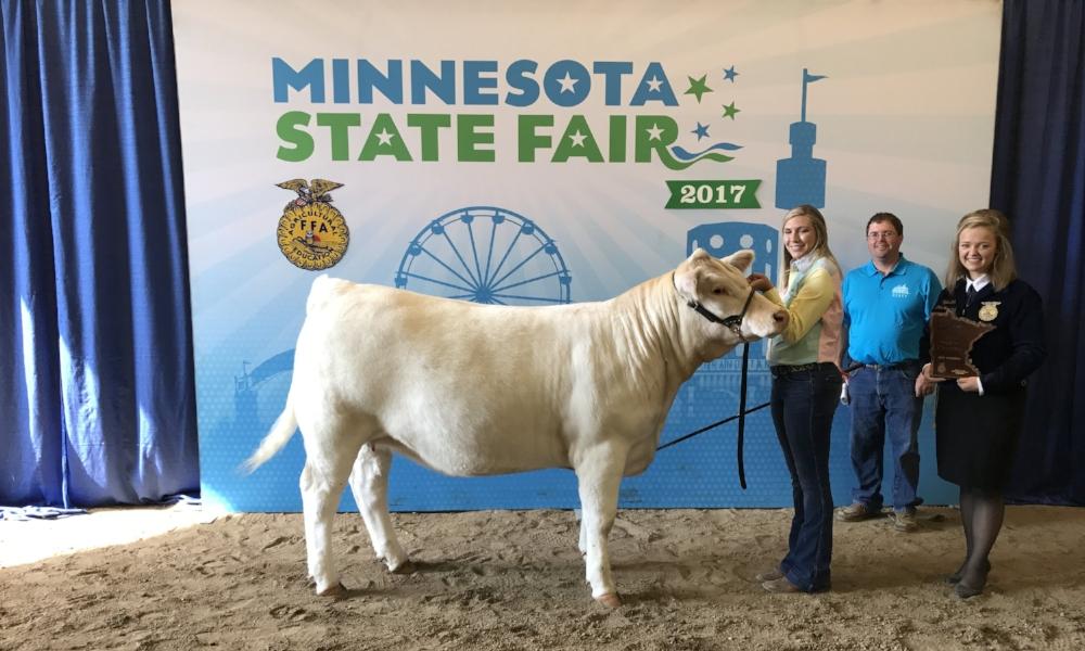 2017 Minnesota State Fair FFA Livestock Show Supreme Champion Beef Female Grand Champion Charolais Paige Netzke Wabasso FFA