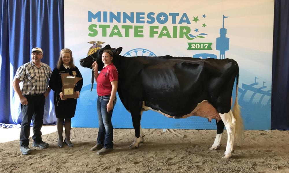 2017 Minnesota State Fair FFA Livestock Show Supreme Champion Dairy Female Grand Champion Registered Holstein Erin Gudknecht Kenyon-Wanamingo FFA