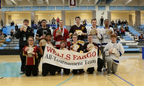 2017-18 Floor Hockey CI Division All-Tournament Team    Names of team members:   Photo credit:  MN Prep Photo
