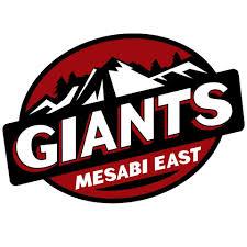 Mesabi East Area