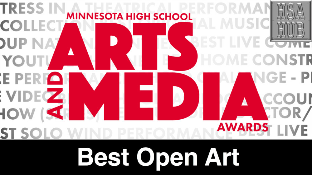 27. Best Open Art    Rules & Guidelines    Sample Video:   Not From Minnesota