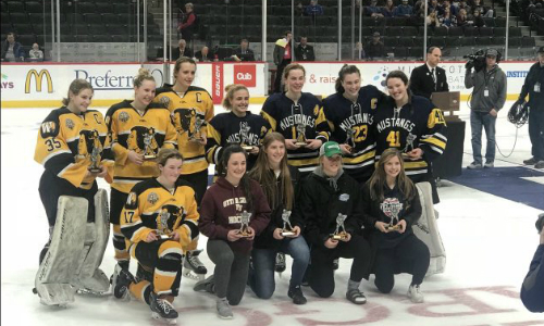 2018-19 Girls Hockey Class A All-Tournament Team    Names of team members    Photo Credit:    MN Prep Photo
