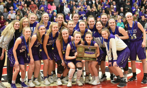 Albany | Section 6AA Champion    Roster  |  Schedule / Results  | Website |  Media Guide    Team Twitter  |  School Twitter  |  Students Twitter  | Team FB |  School FB   Quarterfinal result: 60-49 vs. Holy Family Catholic -  Box Score   Semifinal result: 67-70 vs Minnehaha Academy -  Box Score