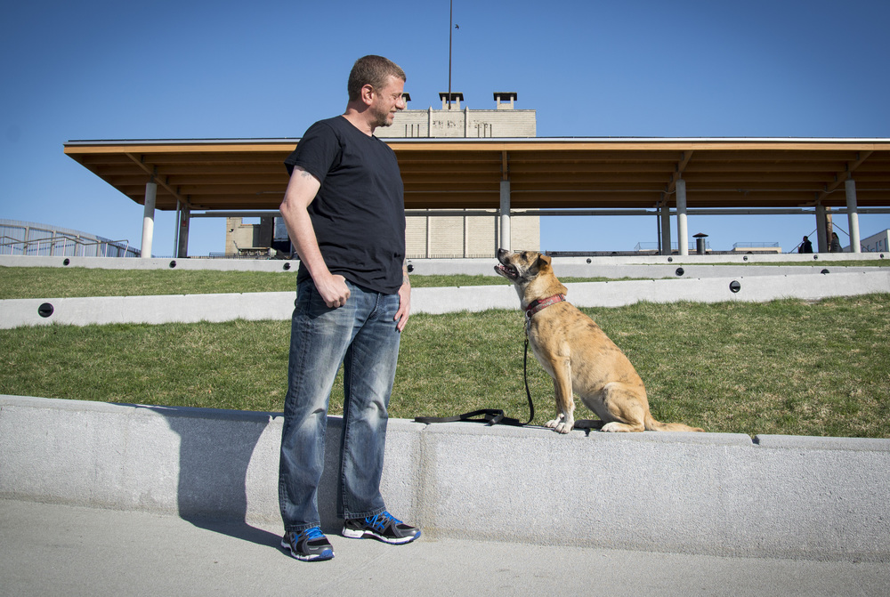 Me and my dog Karma, practicing a great sit stay and the look cue.Photo credit ©hilarybenasphoto