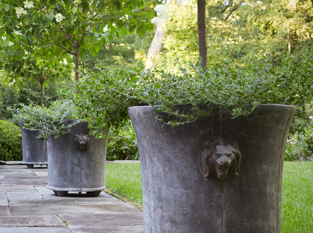 lion planter.jpg