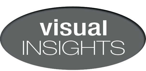 Visual Insights, LLC