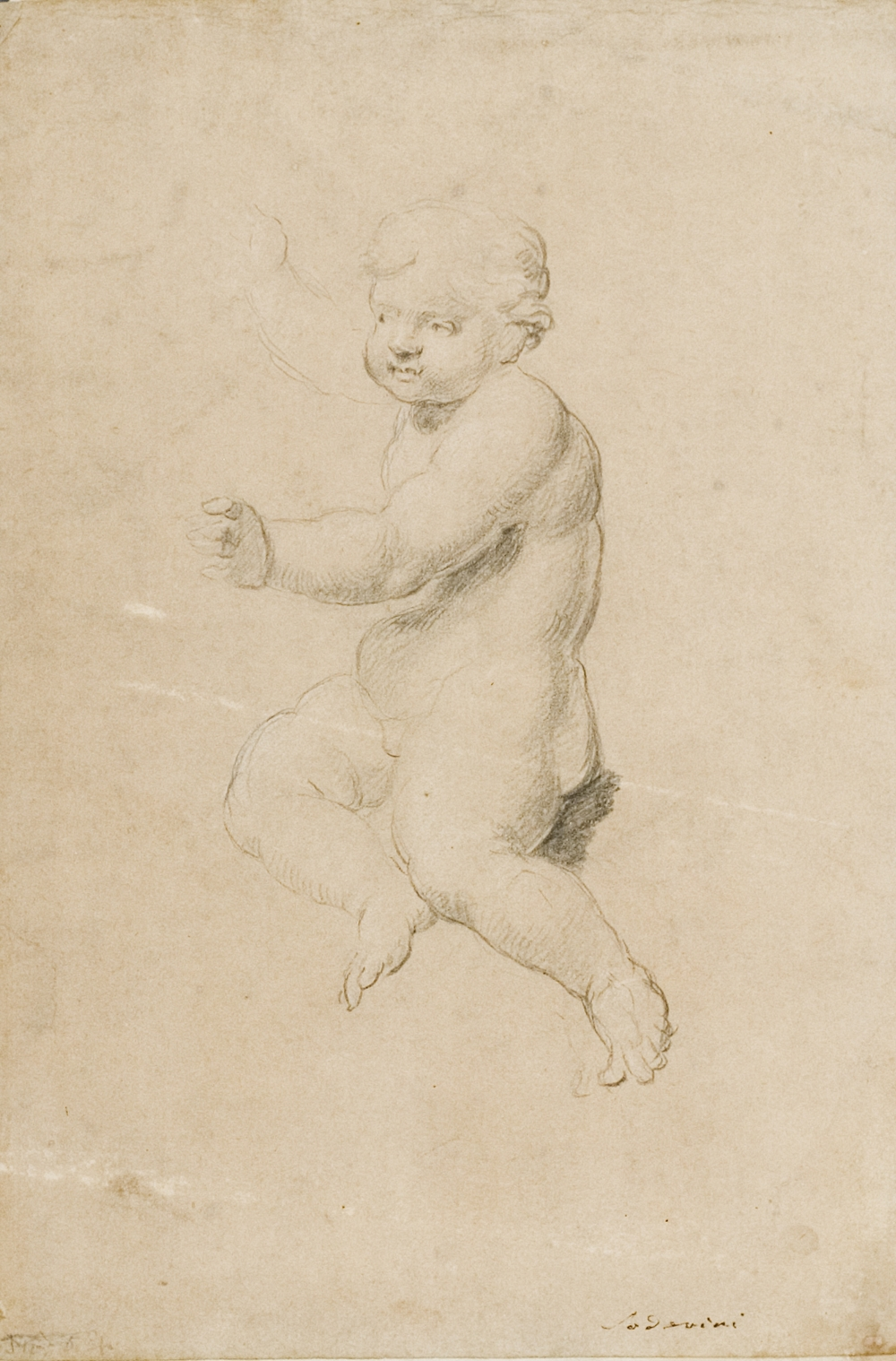 Attributed to Mauro Soderini.  Florence 1704 - Florence 1746.  Putto.