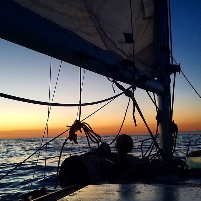 First light after a quiet night shift aboard S.V. Anatrina on our way to Catalina island #sailing #catalinaisland #buccaneerdays2016