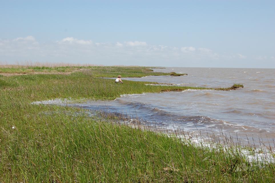 Deltaic Plain 2.jpg