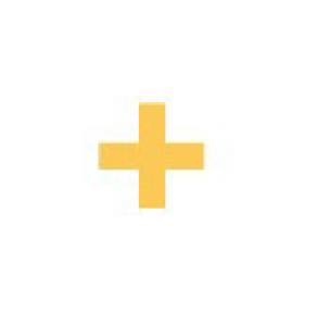 Is it a plus sign or a T? We are using it for both. T stands for TECHNOLOGY = technologist, programmer, maker, tinkerer
