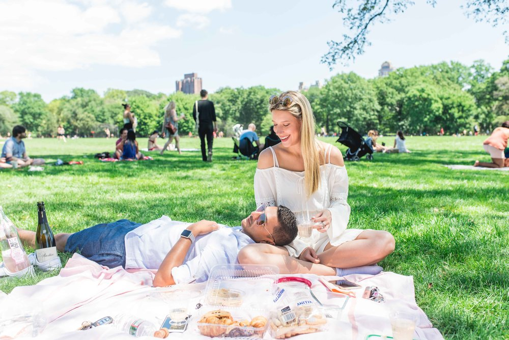 Central Park Picnic, NYC