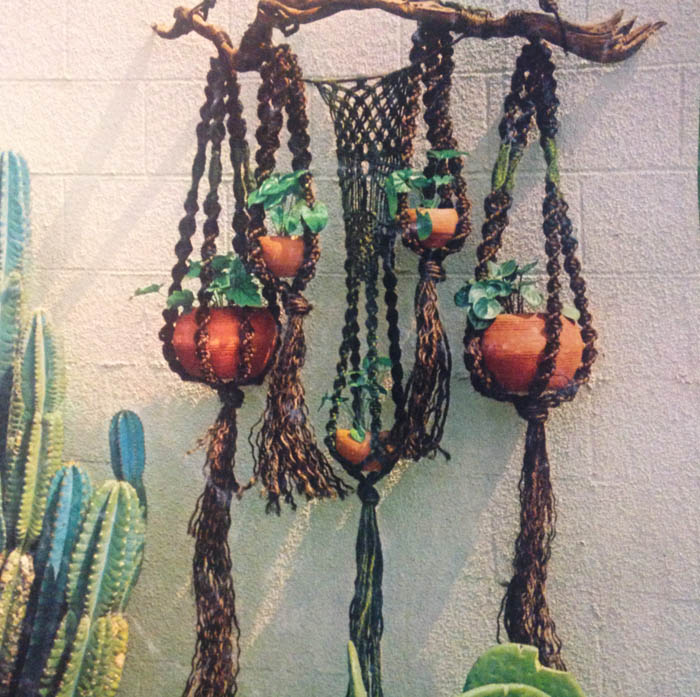 Macrame Plant Hangers With Jessica Dell Sacred Arts