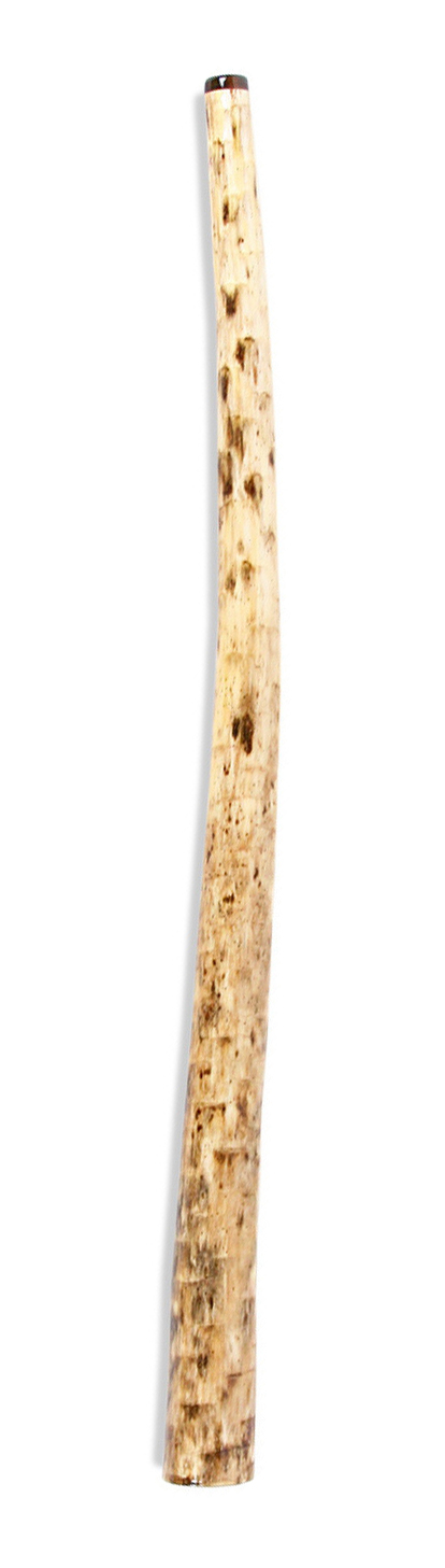 Yucca-Didgeridoo.jpg