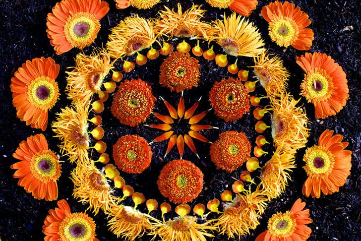 Image by Kathy Klein Flower Mandalas.