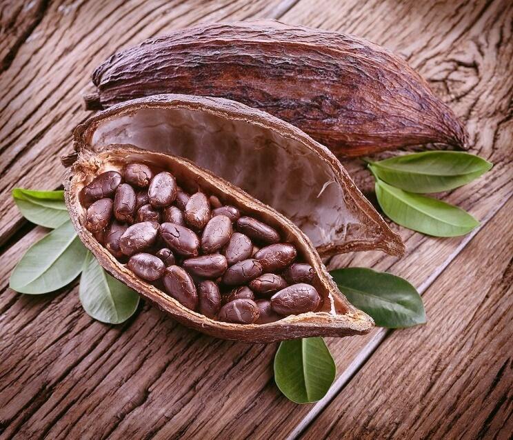 cacaomoon.jpg