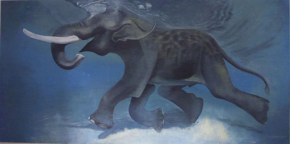 Amir-Shakir-Elephant.jpg