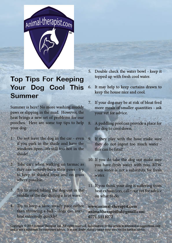 Heatwave Health for Dogs
