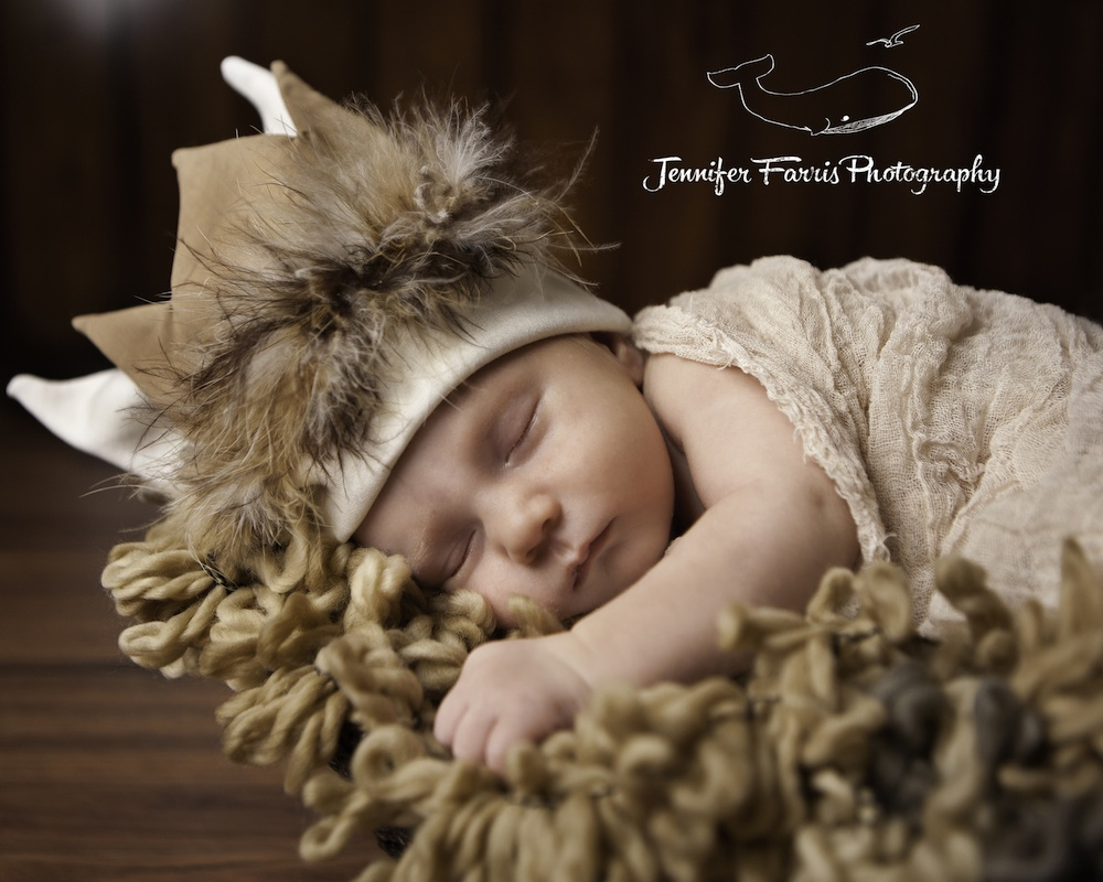 Where the Wild Things Are Themed Newborn Photo Session | Jennifer Farris Photography | as seen on GiggleHearts.com