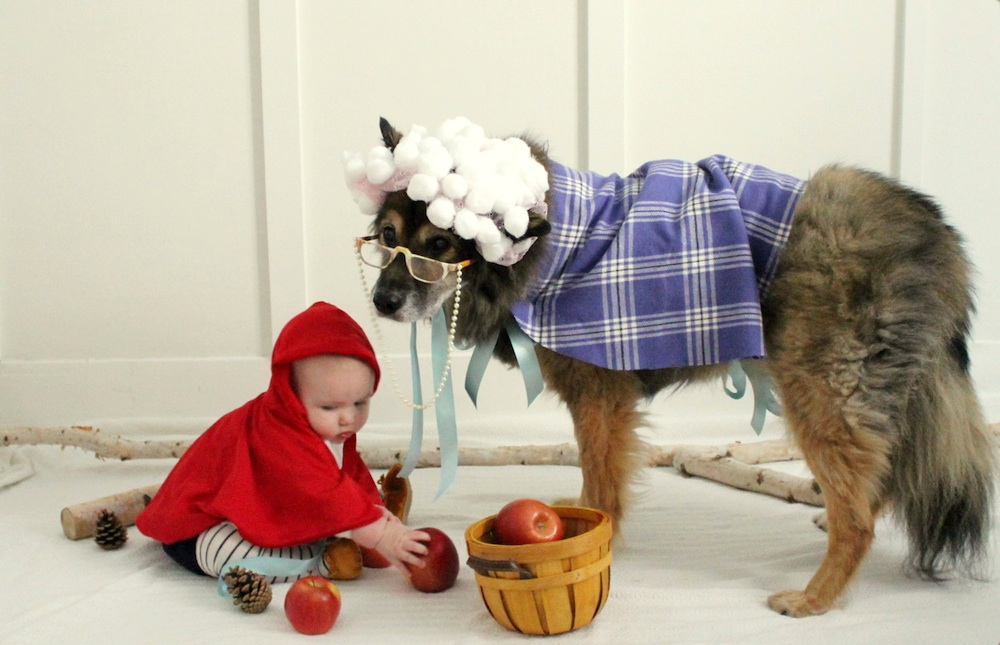 Little Red Riding Hood and the Big Bad Wolf Halloween Costume / the sweetest of costumes for a baby and her dog / from valleyandcolifestyle.com / via www.GiggleHearts.com
