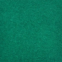 14-858-TFL,<br>LEISURE TOURNAMENT GREEN