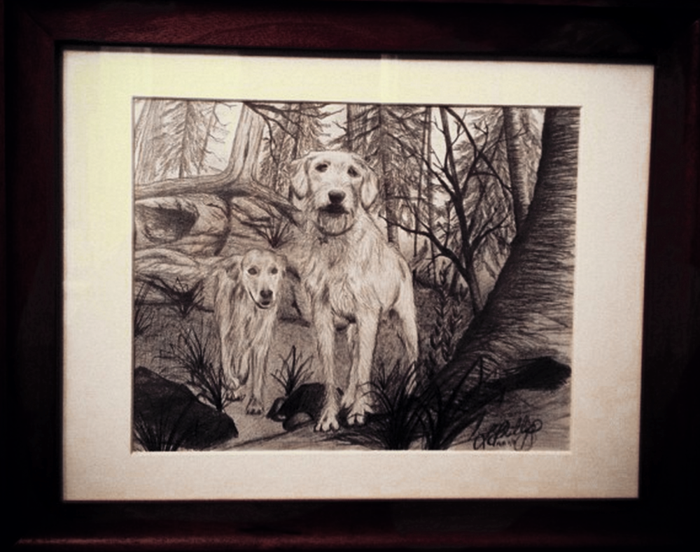 BRUCE AND BAILEY    This was a drawing I did for a friend's 50th birthday. The subjects are Bruce and Bailey, the beloved family pooches. The drawing was adapted from a photo taken at their family cottage in Parry Sound, which is by far this furry duo's favourite place to be.