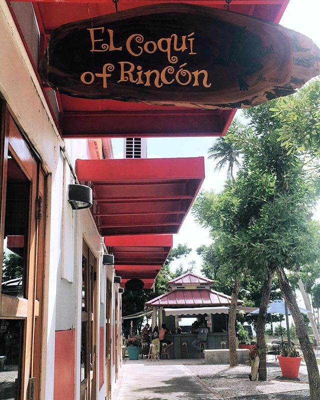 ¡Feliz domingo para todos! // Happy sunday everyone! 🐸💚✨ . . . #elcoquiofrincon #magazine #favoritespot #rincon #puertorico #office #sundayfunday