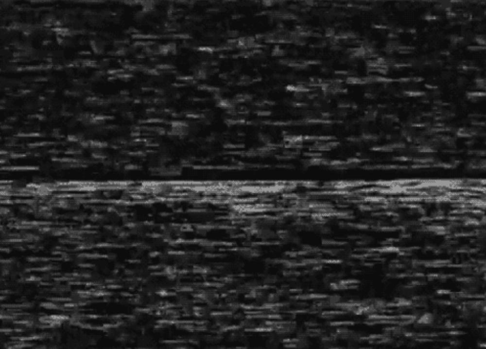 Screen Shot 2019-03-15 at 10.32.04 AM.png