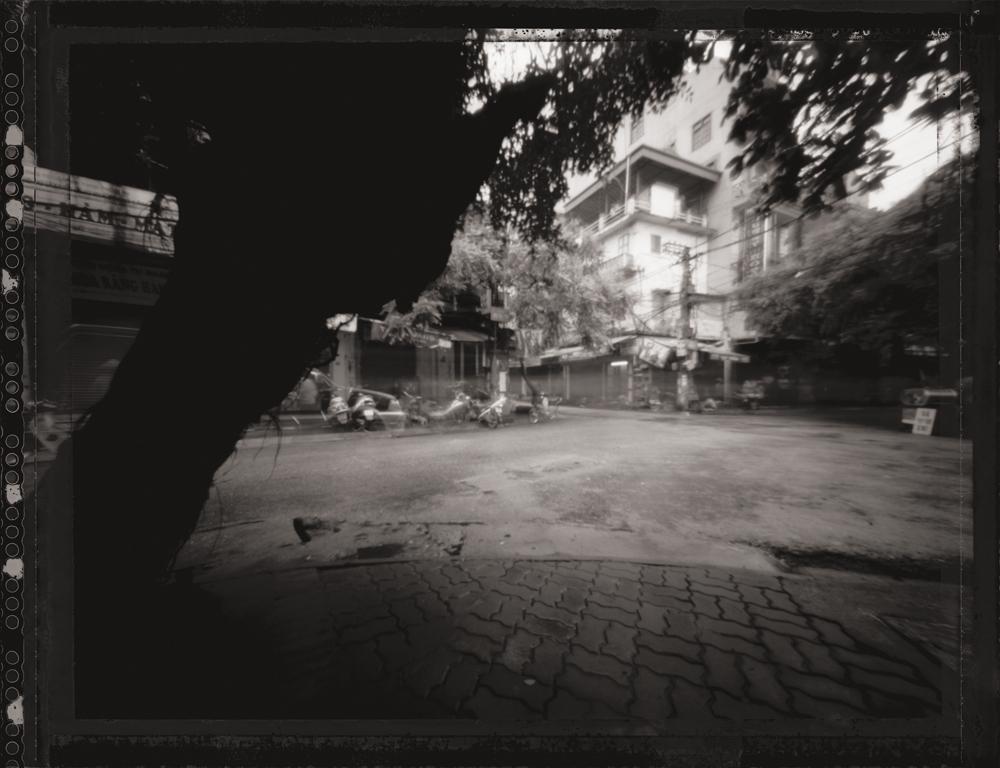 Spirit Tree, Hanoi . Pinhole Image © 2007.